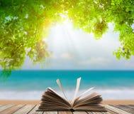 Offenes Buch auf Holzfußboden mit grünem Gras und Blatt über Strandmeer Stockbild