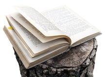 Offenes Buch auf Stumpf Stockfoto