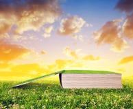 Offenes Buch im Gras Stockfotos
