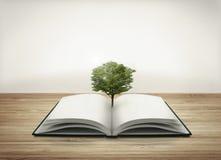 Offenes Buch mit Baum Stockbild