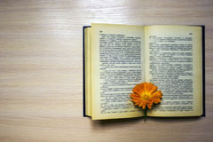 Offenes Buch mit einem Bookmark - ein Calendula lizenzfreie stockfotografie