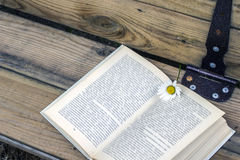 Offenes Buch mit einem Bookmark - eine Gänseblümchenblume lizenzfreie stockfotos