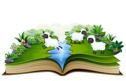 Offenes Buch mit Gruppe Schafen, die auf dem Fluss spielen