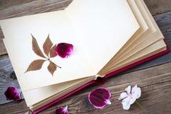 Offenes Buch mit Herbariumblättern und den Blumenblättern von Pelargonien auf dem p Stockfoto