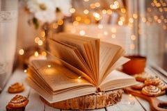 Offenes Buch mit Lichtern lizenzfreie stockbilder
