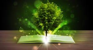 Offenes Buch mit magischem grünem Baum Stockbilder