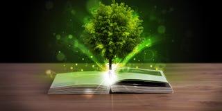 Offenes Buch mit magischem grünem Baum und Strahlen des Lichtes Stockfotos