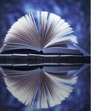 Offenes Buch reflektiert im Wasser Snowy-Landschaft mit Baum und Schnee Lizenzfreies Stockfoto