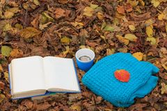 Offenes Buch, Schale heißer Kaffee und gestrickte Strickjacke auf dem Laub im Wald bei Sonnenuntergang Zurück zu Schule getrennte Lizenzfreies Stockfoto