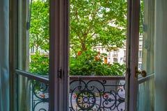 Offenes Fenster und Blumen mit Baum in Paris Stockfotografie