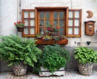 Offenes Fenster und Blumenbeete Lizenzfreies Stockfoto
