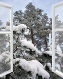 Offenes Fenster zum Wald des verschneiten Winters Stockfotografie