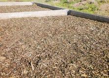 Offenes, industrielles biofilter Lizenzfreies Stockbild
