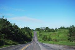 Offenes Land-Straße zeichnete durch Bäume und Grün Lizenzfreies Stockbild