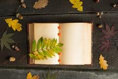 Offenes Notizbuch der Weinlese mit farbigem Herbstlaub über hölzernem Hintergrund Des Herbstes Leben noch Stockfoto