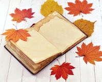 Offenes Tagebuch mit gefallenen Blättern Lizenzfreie Stockfotografie