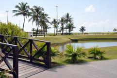 offentlig aracajupark royaltyfria bilder