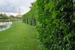 offentlig park Royaltyfria Bilder