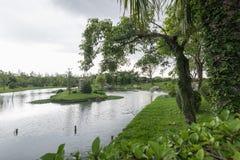 offentlig park royaltyfria foton