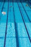 offentlig simning f?r p?l arkivfoto