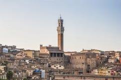 Offentlig slott och Mangia torn i Siena, Italien Fotografering för Bildbyråer