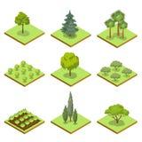 Offentligt parkera den isometriska uppsättningen 3D för dekorativa träd royaltyfri illustrationer