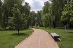 Offentligt parkera i sommartid, grönska, banakastet och bänken, solig blå himmel royaltyfri fotografi
