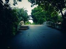 Offentligt parkerar och många gröna träd med broar, Fotografering för Bildbyråer