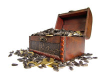 Сoffer filled with grain and coins. Coffer filled with grains and coins on a white background Stock Photos