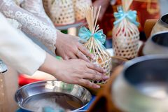 Offer food to monk. Groom give alms food to a Buddhist monk in traditional thai wedding ceremony. Hand while put food offerings in. A Buddhist monk`s alms bowl royalty free stock photo
