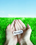Offer for Freedom. Piece of torn paper with the inscription freedom on the palms of the hands with grass and sky as background Stock Image
