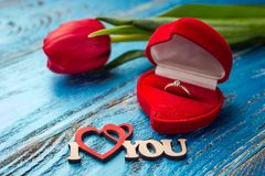 The offer to get married. A gift for St. Valentine`s Day. Marria Royalty Free Stock Photos