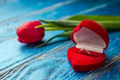 The offer to get married. A gift for St. Valentine`s Day. Marria Royalty Free Stock Image