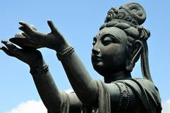 Offerer to the Giant Buddha Royalty Free Stock Photo