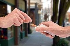 Offering a cigarette from the pack Stock Photos