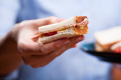 Offering a sandwich Royalty Free Stock Photos