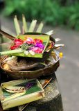 Offering to Hindu Gods in Bali named canang. Offering to Hindu Gods in Bali island which called Canang and made from leaves and flowers royalty free stock image