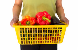Offering vegetables. Woman holding a basket with some vegetables tomatoes peppers and eggplants Royalty Free Stock Photos
