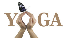 Offering You Yoga. Female using both hands to make an O in the word YOGA, isolated on a white background with a closed wing resting butterfly perched delicately Stock Photo