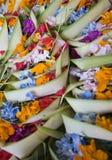 Offerta del Bali Fotografia Stock