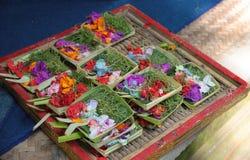Offerta del fiore Immagine Stock