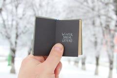 Offerte speciali di inverni Fotografia Stock Libera da Diritti