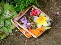 Offerti al tempio in Bali, Indonesia fotografie stock libere da diritti