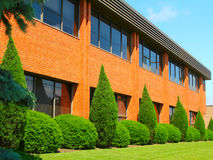 Office. Brick office building with green bushes Stock Photos