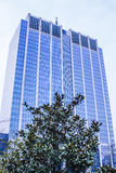 Office blue building. Big office building in a city Royalty Free Stock Photo