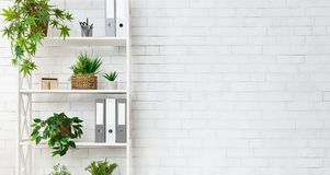 Office bookcase with plants and folders over wall