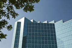 Office Building. Detail of the architecture of a modern office building with reflective glass exterior windows. Clear blue sky Stock Images