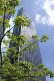 Office Building. Modern building stands behind the tree with blue sky background Stock Photo