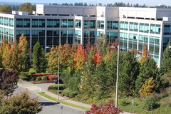 Office Building with Autumn Foliage Royalty Free Stock Images