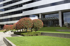 Office building exterior garden Royalty Free Stock Photo